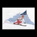 borduurpakket skiën