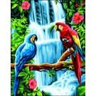 stramien papegaaien bij waterval