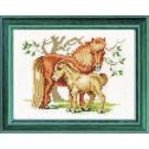 borduurpakket paard met veulen